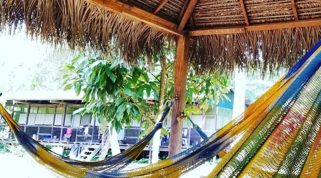 A hammock area in Taricaya